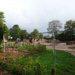 Unser Schulgarten und Herbstferien